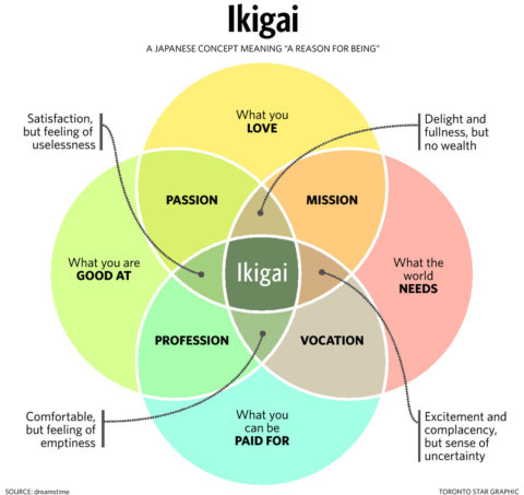 Finding your ikigai!
